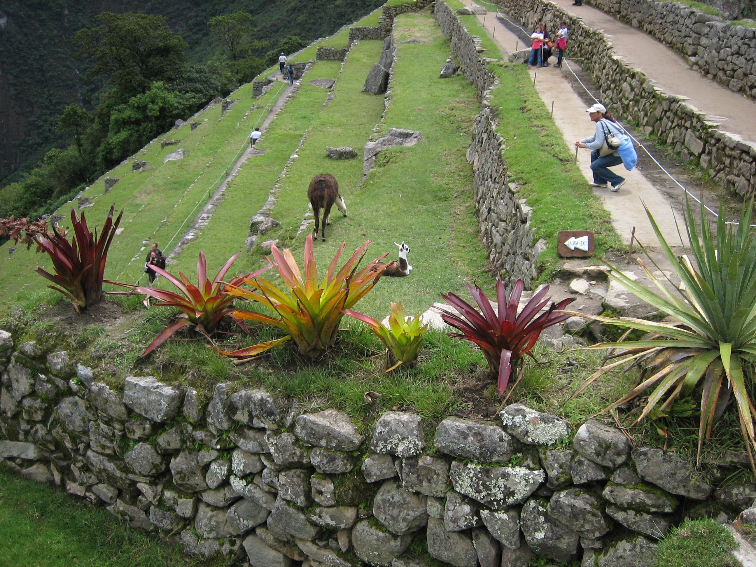 temple, inka temple, inca temple, templo, machu picchu, machupicchu, machu picchu temple, aguas calientes, cusco, peru, tour, trek, trip, killa expeditions, adventure, trek to machu picchu, machu picchu trek, machu picchu tour, train tour, terraces
