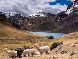 clear lake on rainbow mountain machu picchu trek