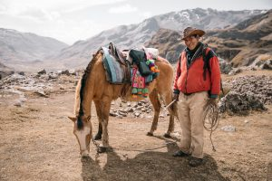 Ethical Travel - Guide with Horse