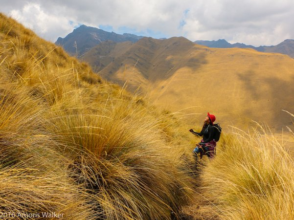 trekking ancascocha with killa expeditions by amoris walker